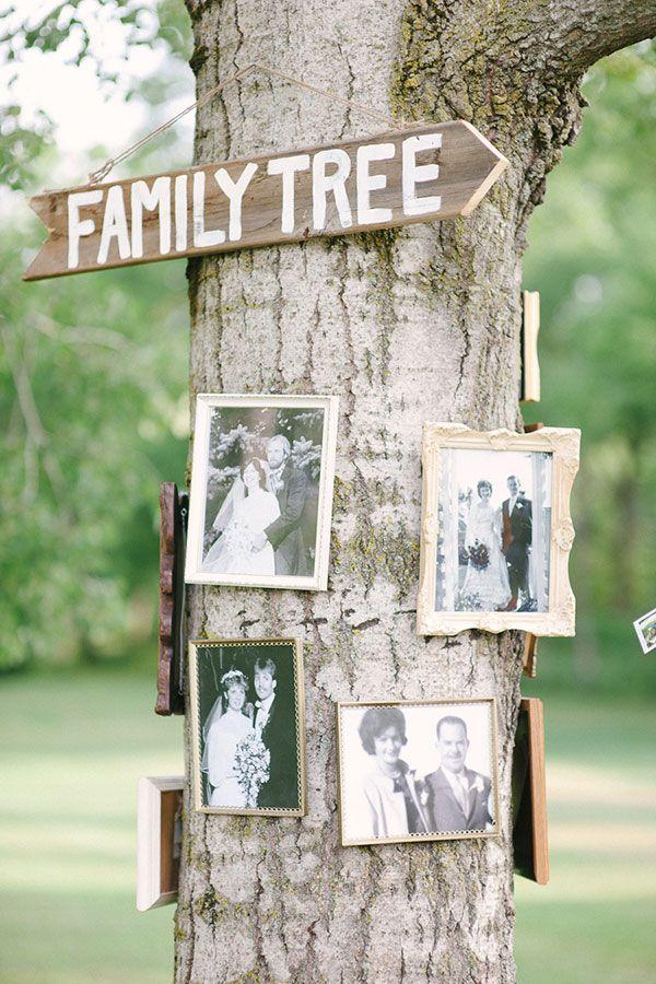 Arbre généalogique cérémonie laïque mariage