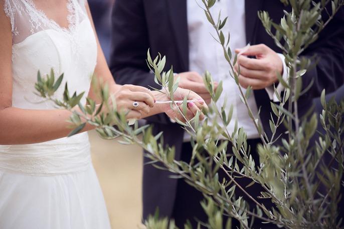 Arbre à vœux © Audrey Le Guen