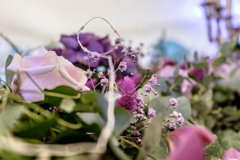 Fleurs parme violet (Cérémonie laïque d'Amélie et Antoine)